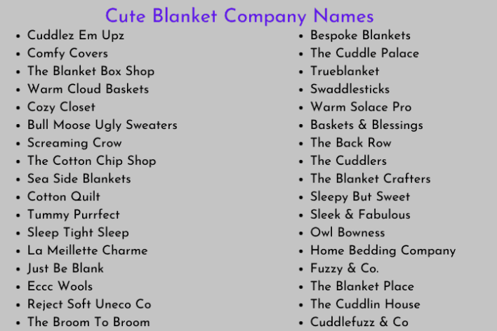 Cute Blanket Company Names