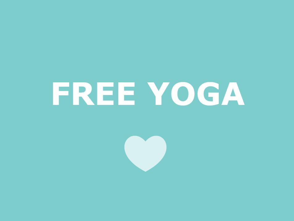 free yoga videos from next level yoga tara kestner now on youtube