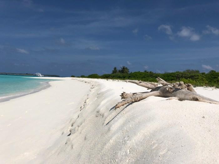 Day 2 les maldives croisières amba