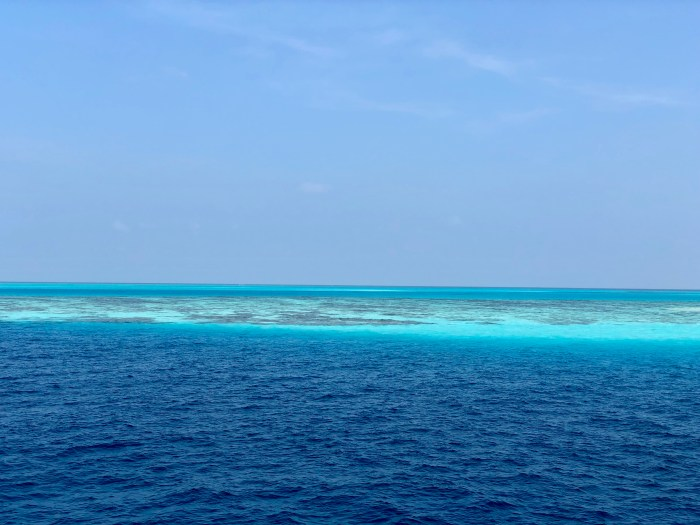 Day 5:  dive video les maldives
