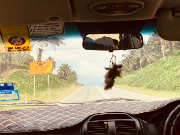 En chemin vers kinabatangan