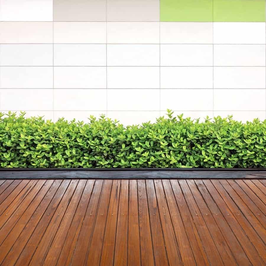 Top 50 Best Wooden Walkway Ideas - Wood Path Designs on Side Yard Walkway Ideas id=55330