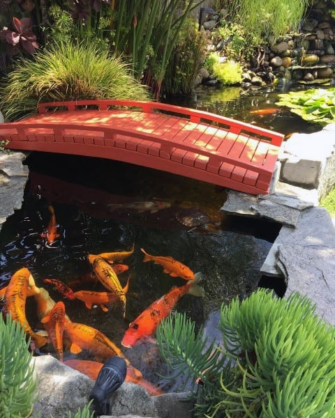 Top 50 Best Backyard Pond Ideas - Outdoor Water Feature ... on Koi Ponds Ideas id=52764