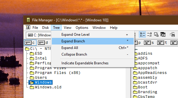 image 2 - Windows 3.0 File Manager Now Available on Windows 10