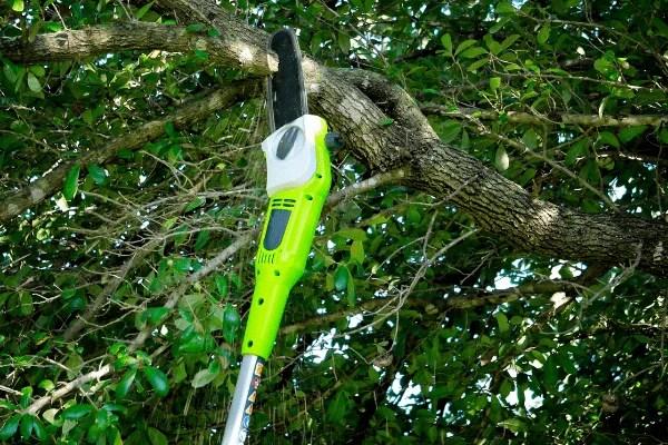 How to Use a Pole Saw