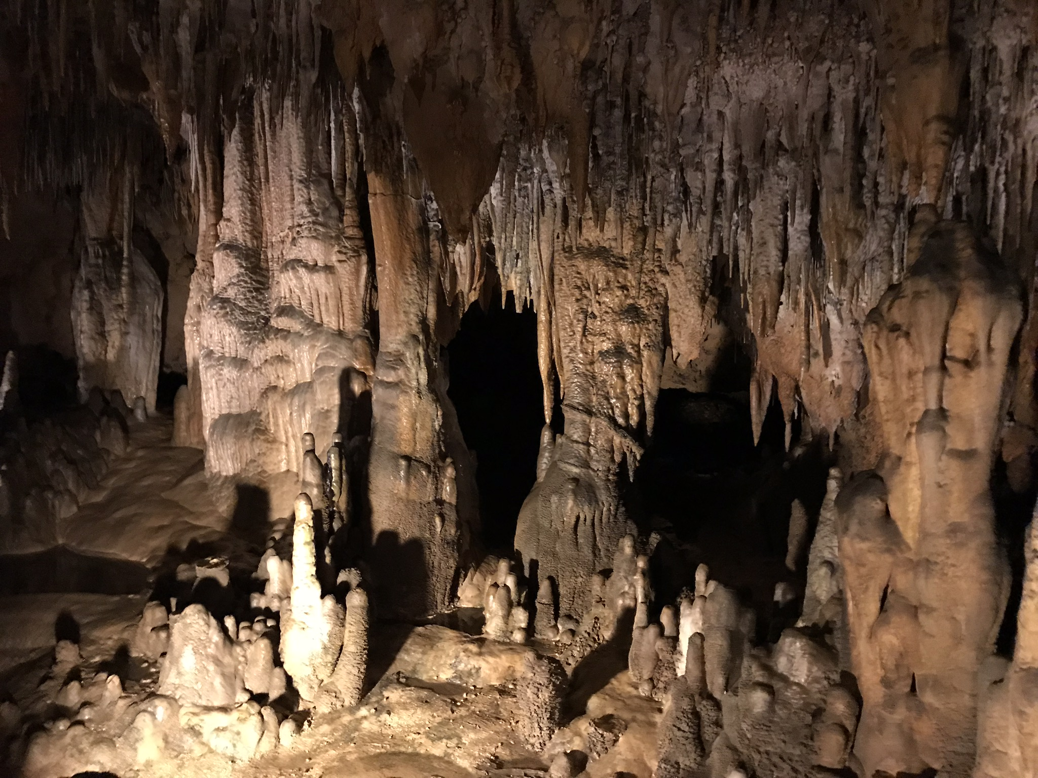 Exploring the Caverns in Florida