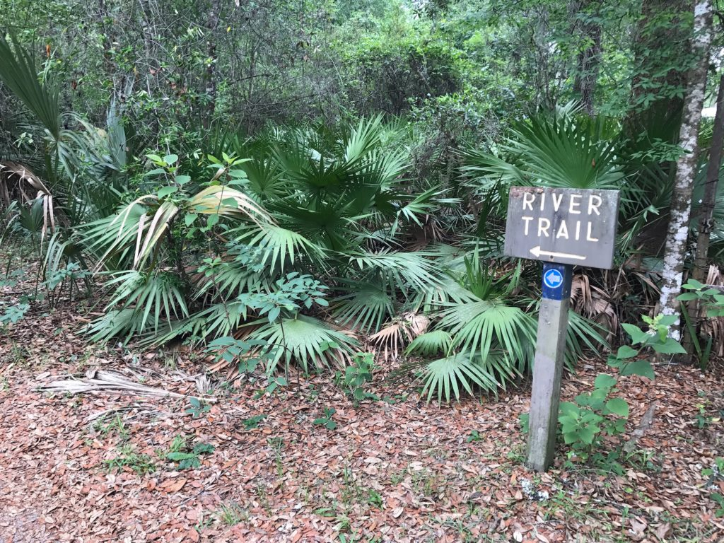 silver river museum in silver springs state park