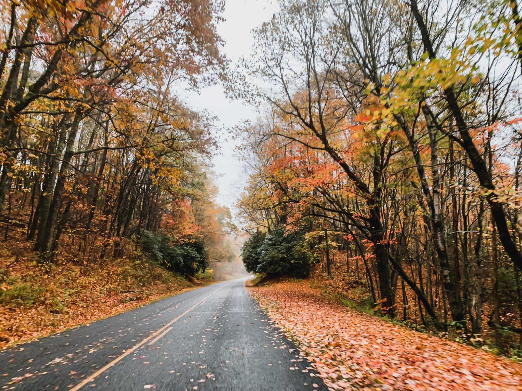 blue ridge parkway scenic drive