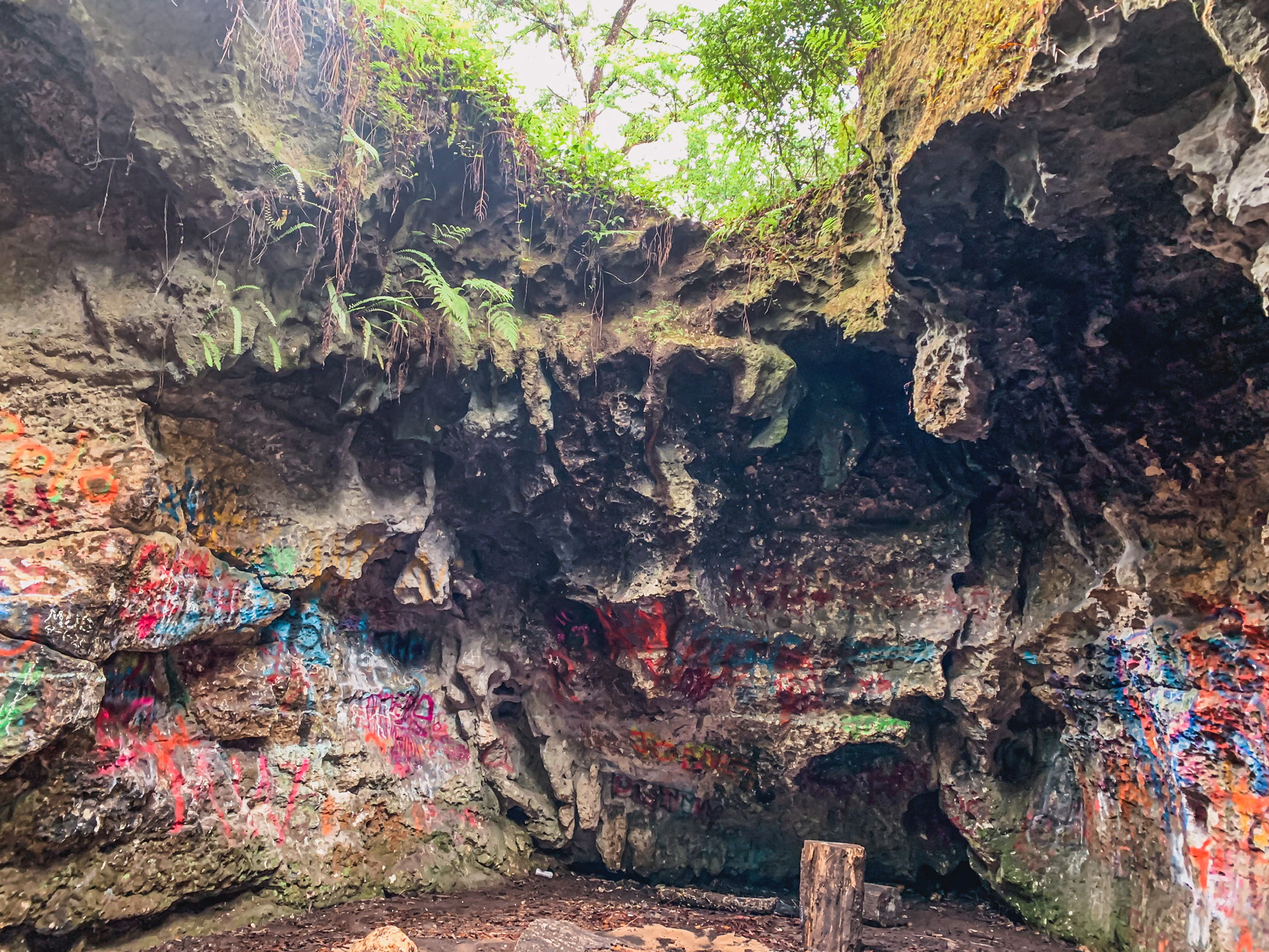 vandal cave in Withlacoochee State Forest