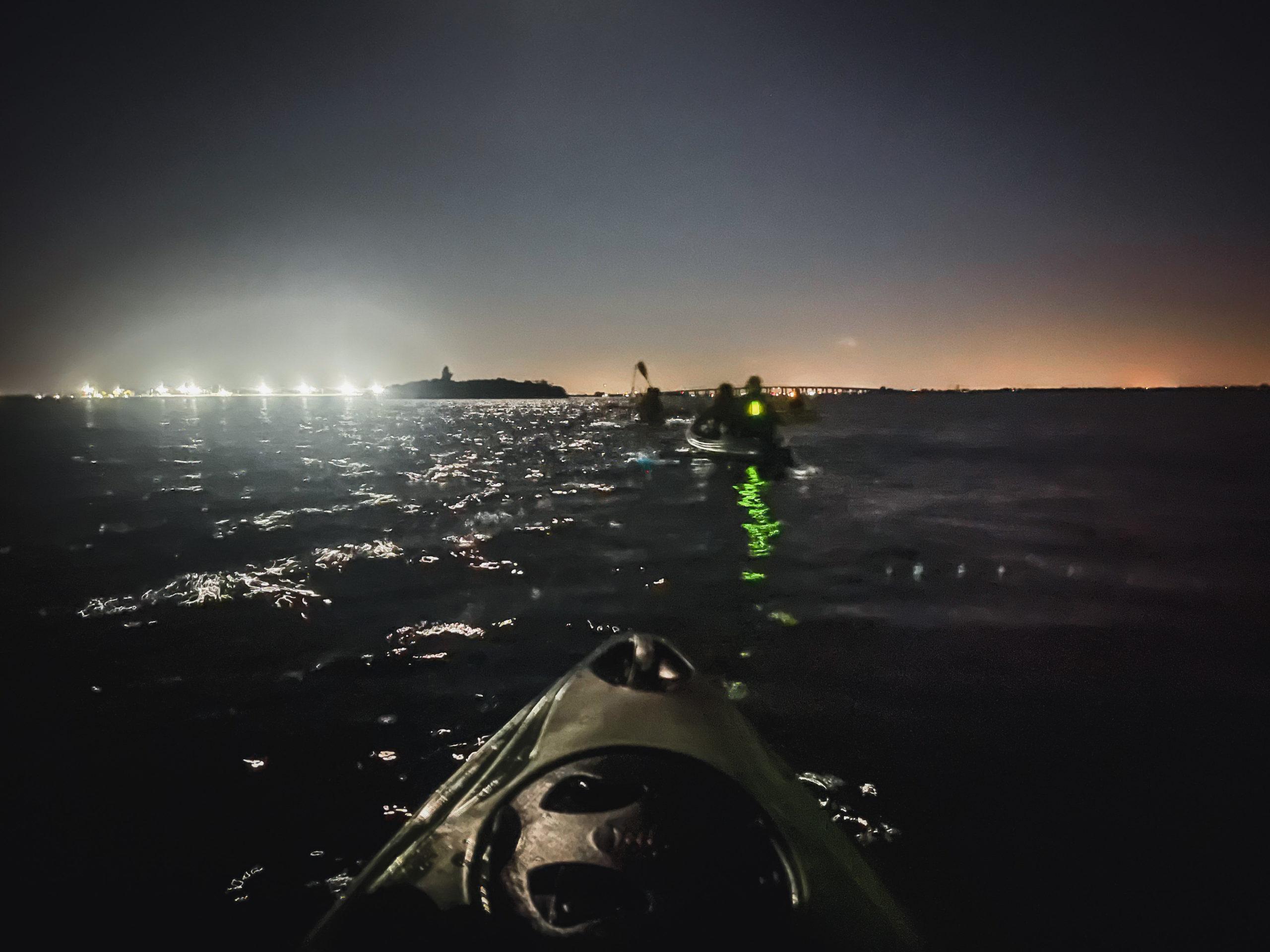 bioluminescence paddle in florida