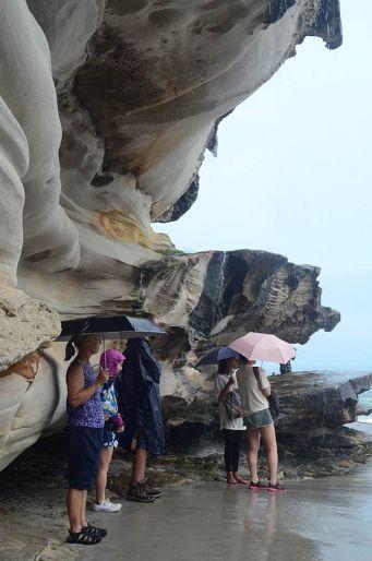 seeking-shelter-vertical