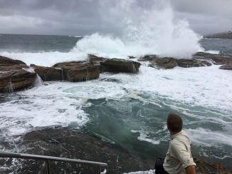 torsten-ocean-surf