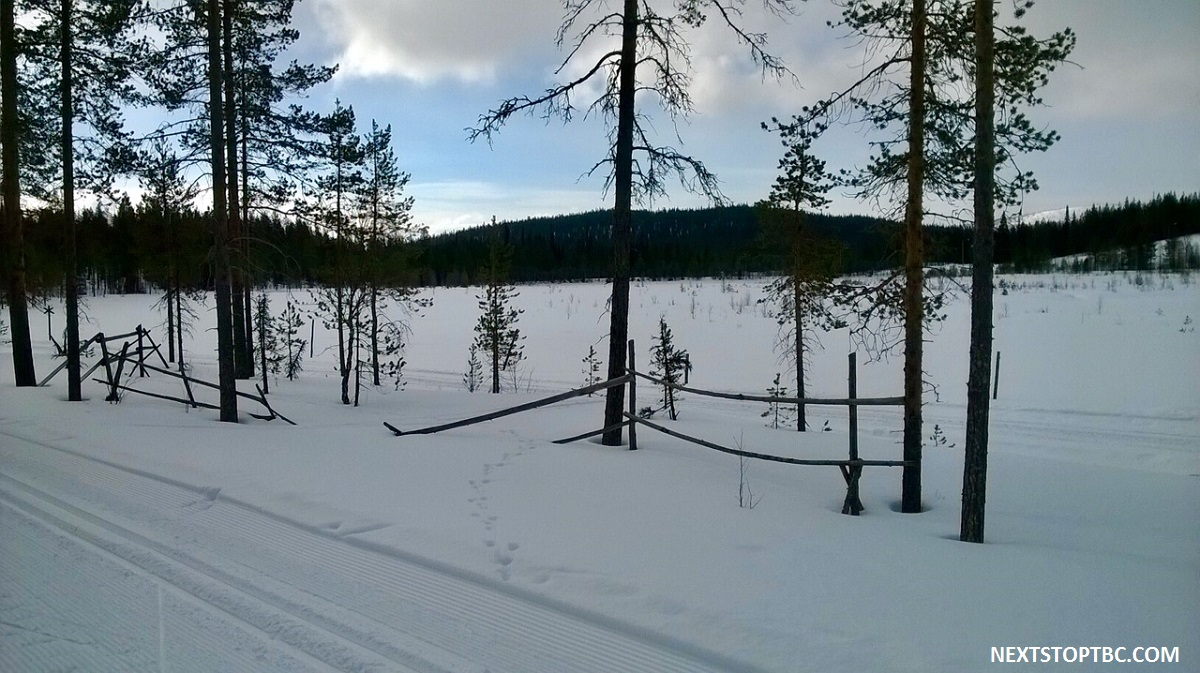 Lapland Salla cross-country skiing