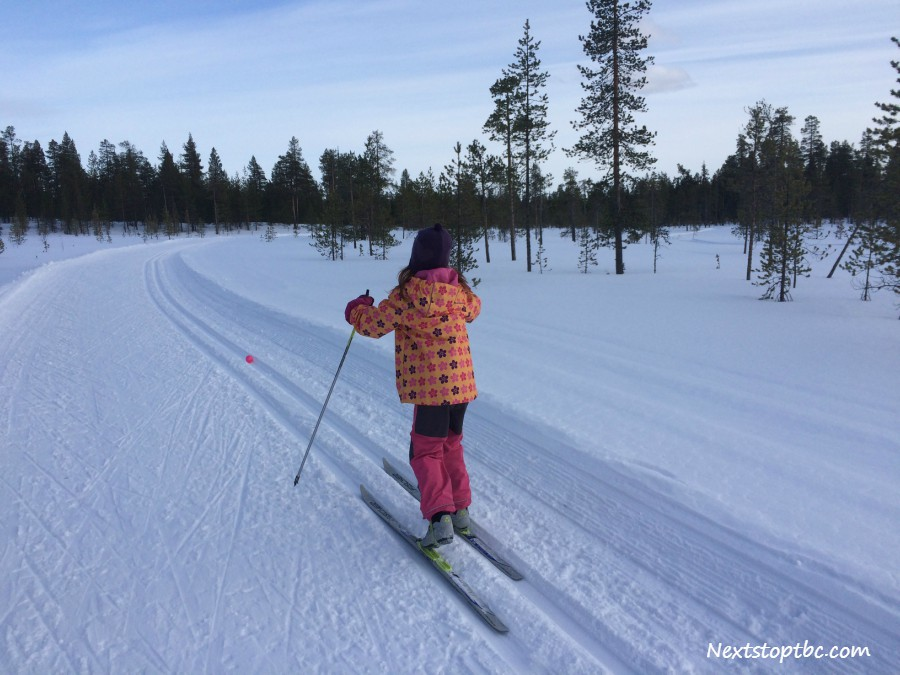 Cross-country skiing games