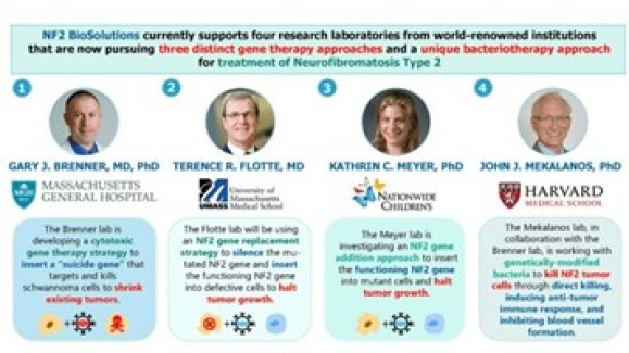 NF2 research