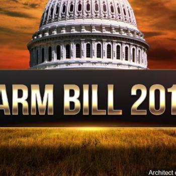 Small Gains, Big Disappointments in Status Quo Farm Bill