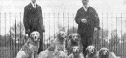 Image shows Col. The Hon. W. le Poer Trench (right) with his brother and his St. Hubert's kennel – circa 1906.