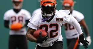 USATSI_10107624_168383805_lowres Bengals Place Jeremy Hill On IR, Waive K Marshall Koehn