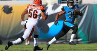 USATSI_10396845_168383805_lowres Bengals Promote LB Hardy Nickerson, Waive DT Pat Sims