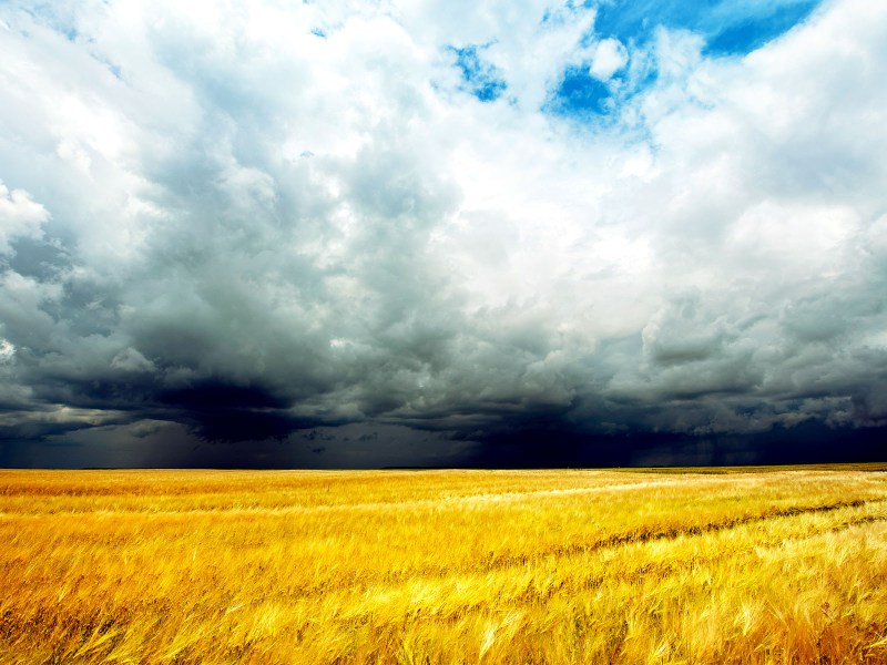 Climate Column: Why Do Farmers Care About Climate Change? Introduction