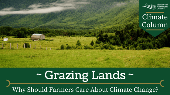 climate-column-grazing-lands