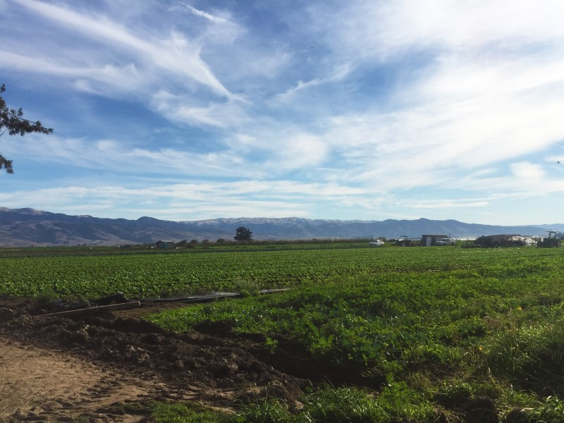 NFU Beginning Farmers Travel to California for On-Farm Learning Sessions