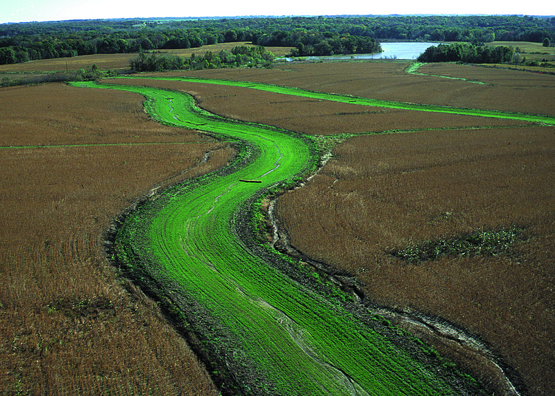 What Can Farmers Do About Climate Change? Grassed Waterways