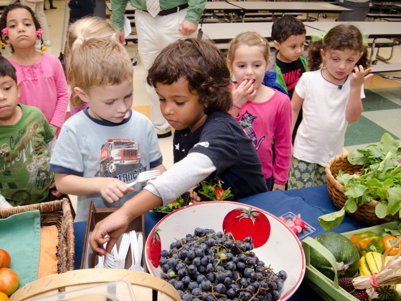 Access to Markets: Farm to School