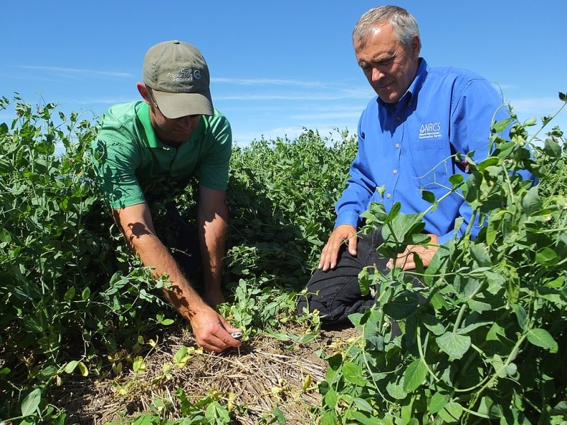 What Do Farmers Need to Know About Climate Change? Commodity Plus Carbon Futures