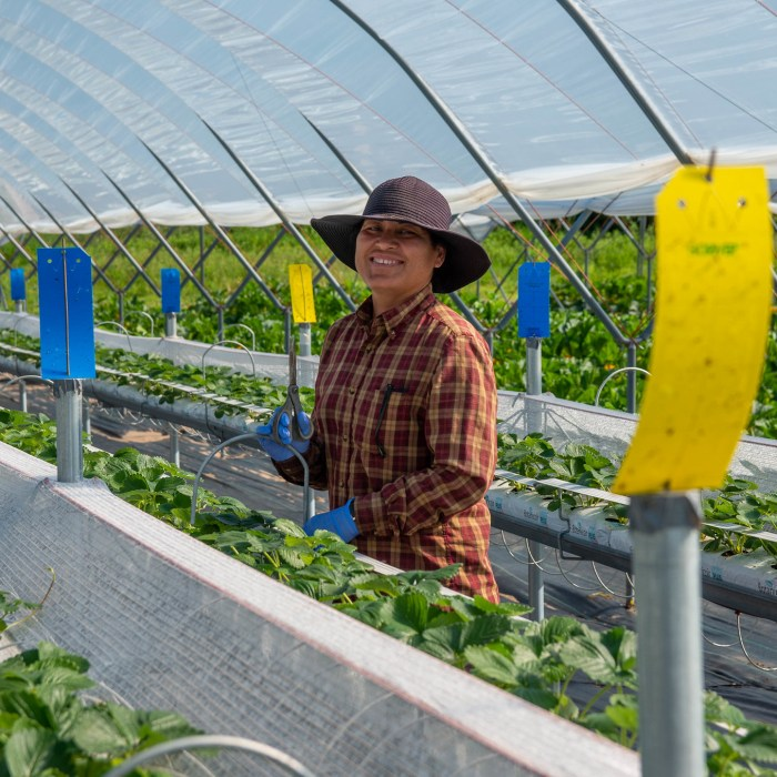 Farm Workforce Modernization Act an Important Step Towards a Stable and Fair Agricultural Workforce