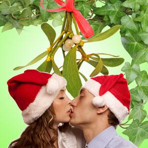 Fragrance Oils for Winter:Mistletoe & Ivy Fragrance Oil