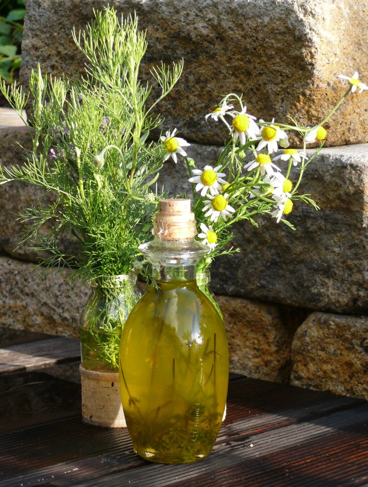 solar herbal infusion