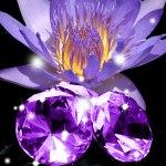 Top Exotic Fragrances: Blackened Amethyst Fragrance Oil