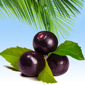 Popular Tropical Fragrance Oils: Acai Berry Fragrance Oil