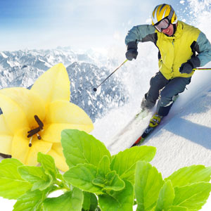 alpine snowdrift fragrance oil