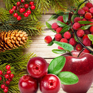 Popular Christmas Fragrances: Country Christmas Fragrance Oil