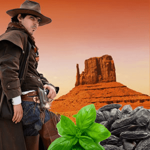 Wild Wild West Fragrance Oil
