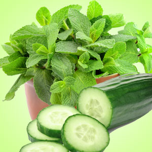 Fragrance Oils for Saint Patricks Day: Cucumber Mint Fragrance Oil