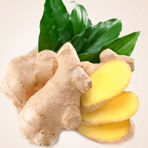 Fresh Ginger Fragrance Oil
