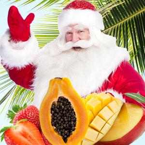 Island Christmas Fragrance Oil
