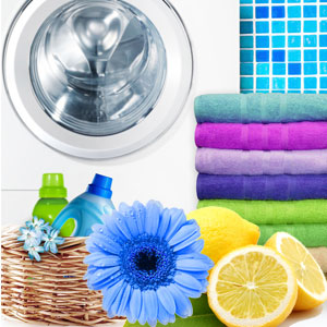 Laundromat Fragrance Oil