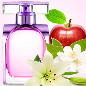 The NG Cancan Type Fragrance Oil