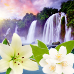 Top Exotic Fragrances-NG Tahitian Waterfall Type Fragrance Oil