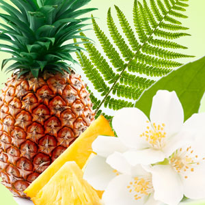 Pineapple Jasmine Fragrance Oil