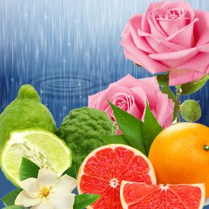 Torrential Rains Fragrance Oil