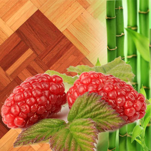 Tayberry and Teakwood Fragrance Oil