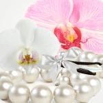 Top Exotic Fragrances:Vaniglia del Madagascar Type Fragrance Oil