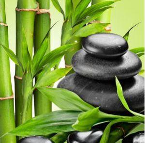 Fragrance Oils for Saint Patricks Day: Fresh Bamboo Fragrance Oil
