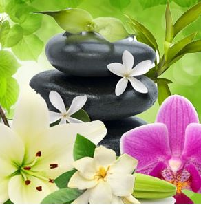 Best Floral Fragrance Oils Kauai Spa Fragrance Oil