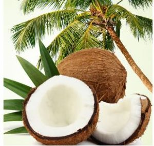 Best Coconut Fragrance Oils Coconut Craziness Fragrance Oil